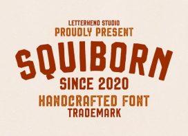 Squiborn Display Font