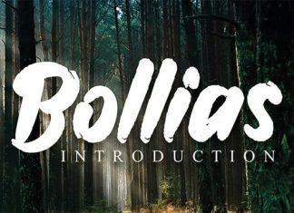 Bollias Brush Font