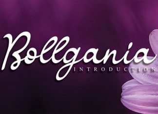 Bollgania Script Font