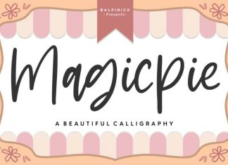 Magicpie Beautiful Calligraphy Font