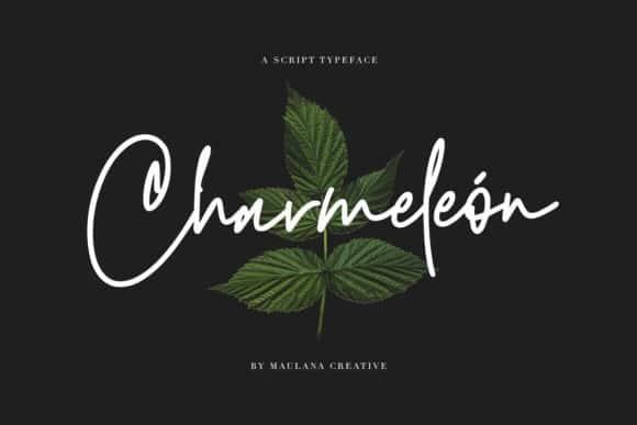 Charmeleon Handwritten Font