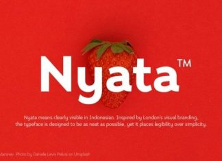 Nyata Sans Serif Font
