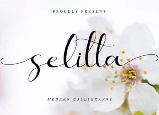 Selitta Calligraphy Font