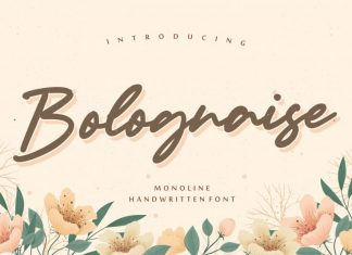 Bolognaise Monoline Handwritten Font
