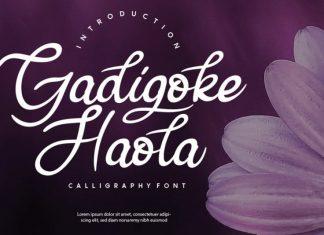 Gadigoke Handwritten Font