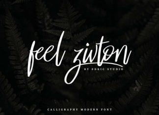 Feel Zivton Calligraphy Modern Font