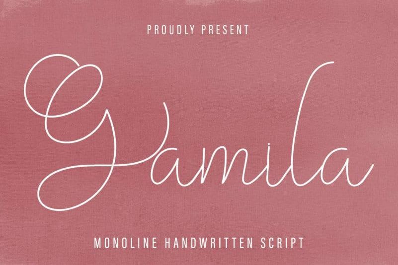 Gamila Thin Handwritten Font