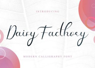 Daisy Facthory Calligraphy Font