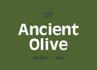 Ancient Olive Sans Serif Font