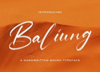 Baliung Brush Font
