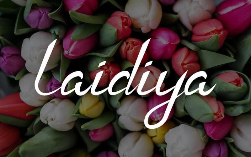 Laidiya Handwritten Font