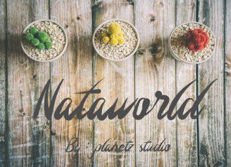 Nataworld Handwritten Font