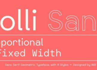 Polli Sans Serif Font Family