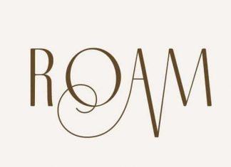 Roam Sans Serif Font