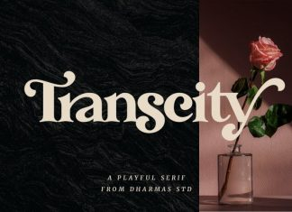 Transcity Serif Font