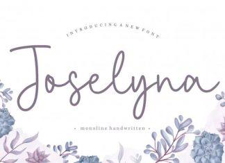 Joselyna Monoline Handwritten Font