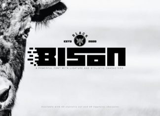 Black Bison Display Font
