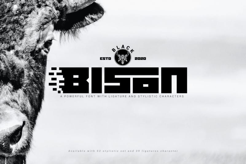 Black Bison Display Font