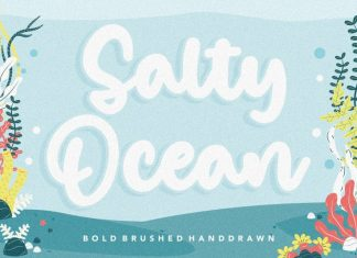 Salty Ocean Brushed Handdraw Font