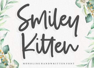 Smiley Kitten Monoline Handwritten Font