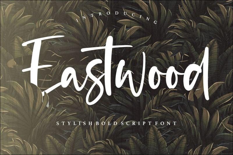 Eastwood Stylish Bold Script Font