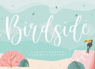 Birdside Lovely Modern Handwritten Font