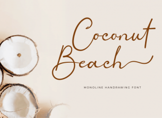 Coconut Beach Calligraphy Font