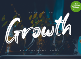 Growth Brush Font