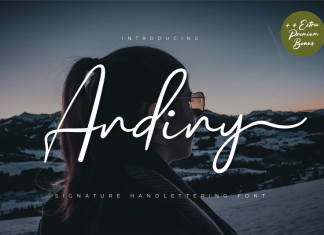 Andiny Script Font