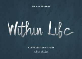 Within Life Handmade Script Font