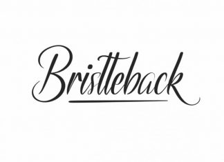 Bristteback Calligraphy Font