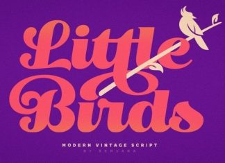 Little Birds Script Font