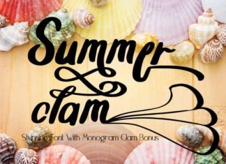 Summer Clam Calligraphy Font