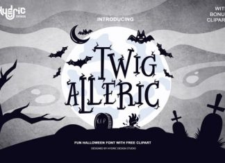 Twig Alleric Display Font
