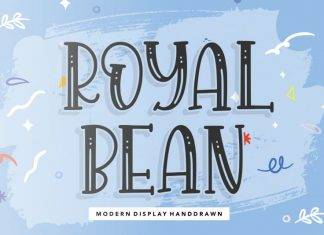 ROYALBEAN Modern Display Handdraw Font