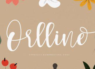 Orlline Script Font