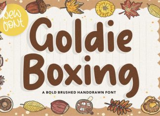 Goldie Boxing Brushed Handdrawn Font