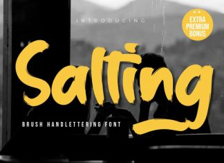 Salting Brush Font