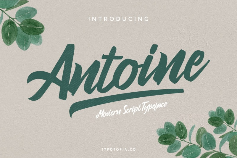 Antoine Script Font