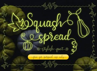 Squash Spread Calligraphy Font