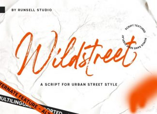 Wildstreet Brush Font