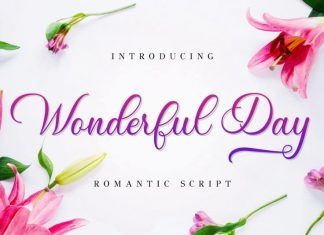 Wonderful Day Calligraphy Font