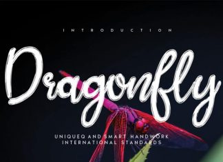 Dragonfly Brush Font