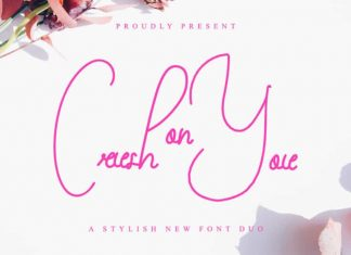 Crush On You Script Font