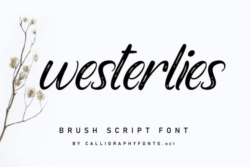 Westerlies Calligraphy Script Font