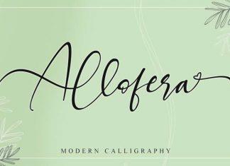 Allofera Calligraphy Font