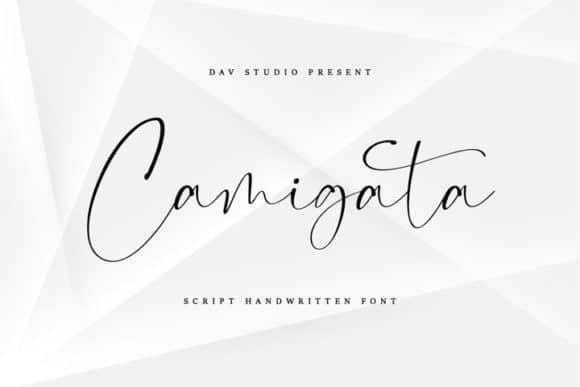 Camigata Font