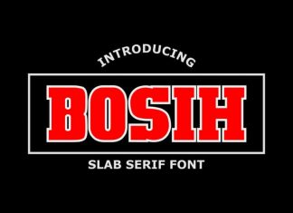 Bosih Slab Serif Font