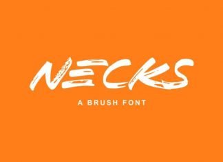 Necks Brush Font
