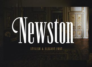 Newston Slab Serif Font